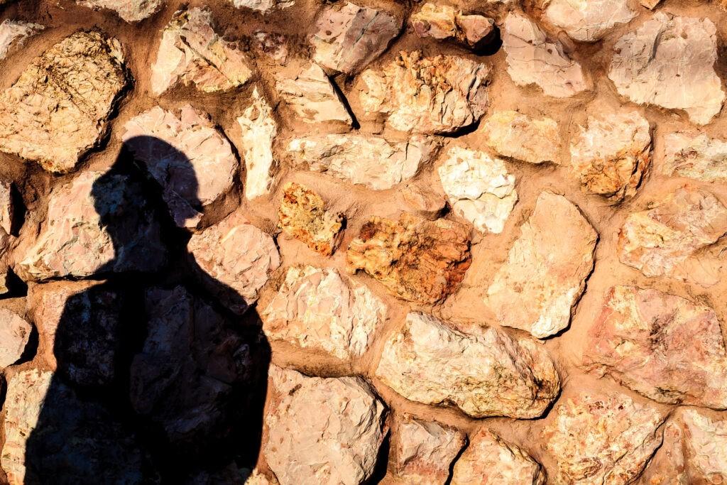 Covid-19 ou a nova Caverna de Platão