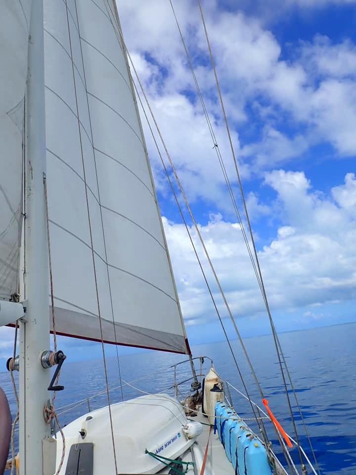 Das Bahamas para os festivais de Verão
