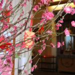 Entre a observância da Tradição e a vivência da Fé